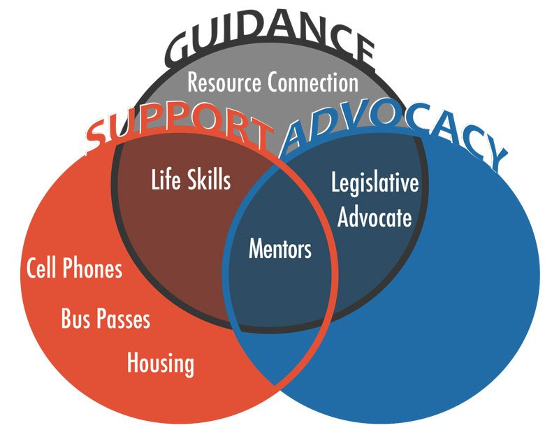 Overlapping circles visualizing THRU Project's mission of support, guidance, and advocacy